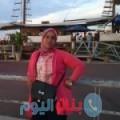 شادة من محافظة سلفيت أرقام بنات واتساب